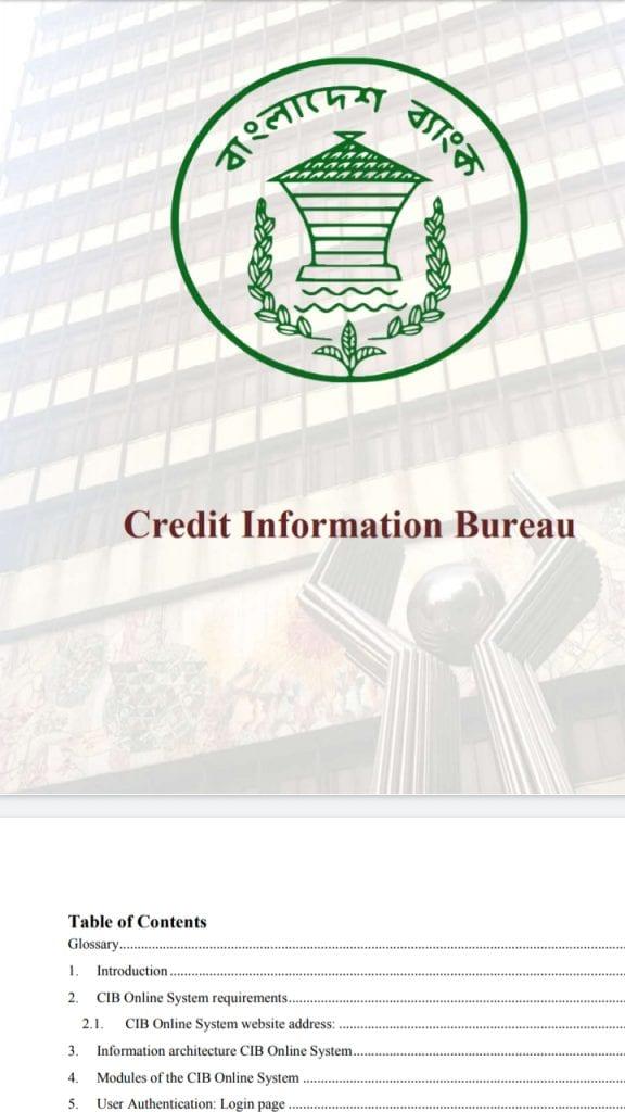 CIB report